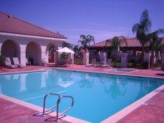Great looking swimming pool