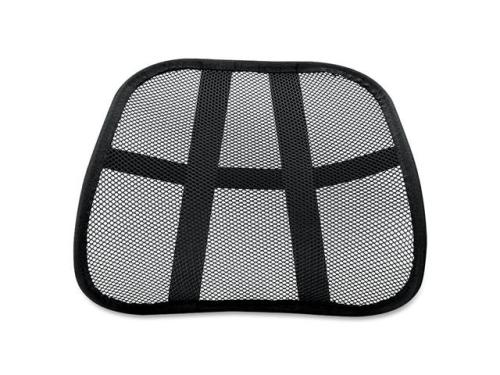 picture of mesh back support