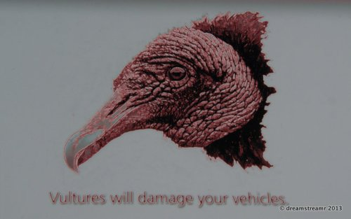 Picture of vulture warning sign