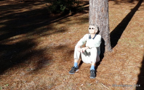 Hike Picnic Nap